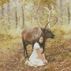 Untitled by Katerina Plotnikova (katerina_plotnikova)) on 500px.com