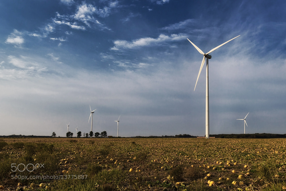 Photograph Wind power plants by Hober Szabolcs on 500px