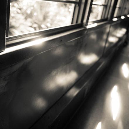 Train's lights