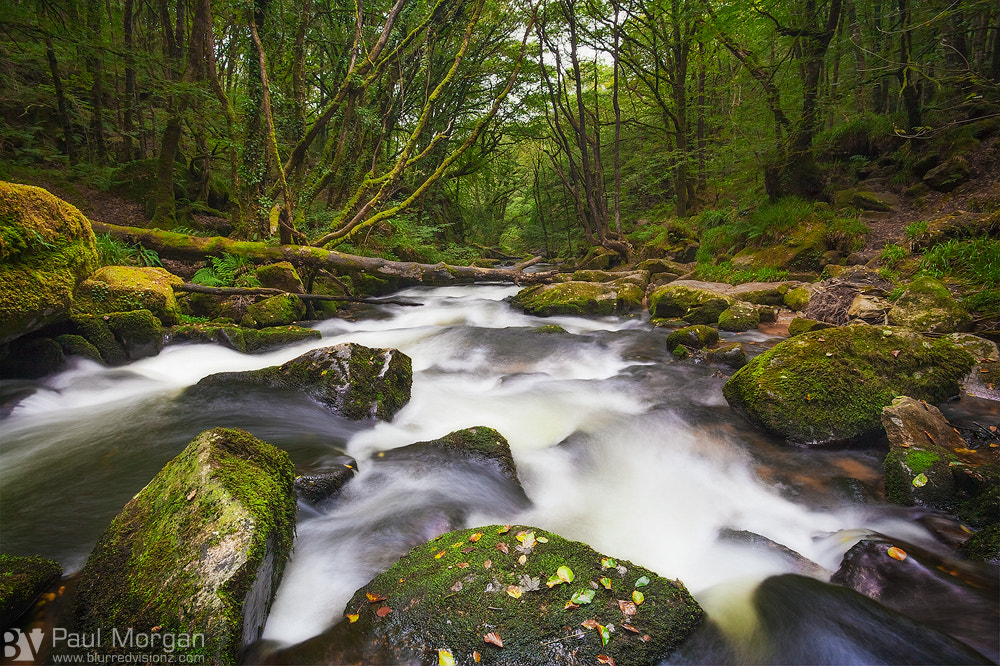 Photograph Downstream by Paul Morgan on 500px
