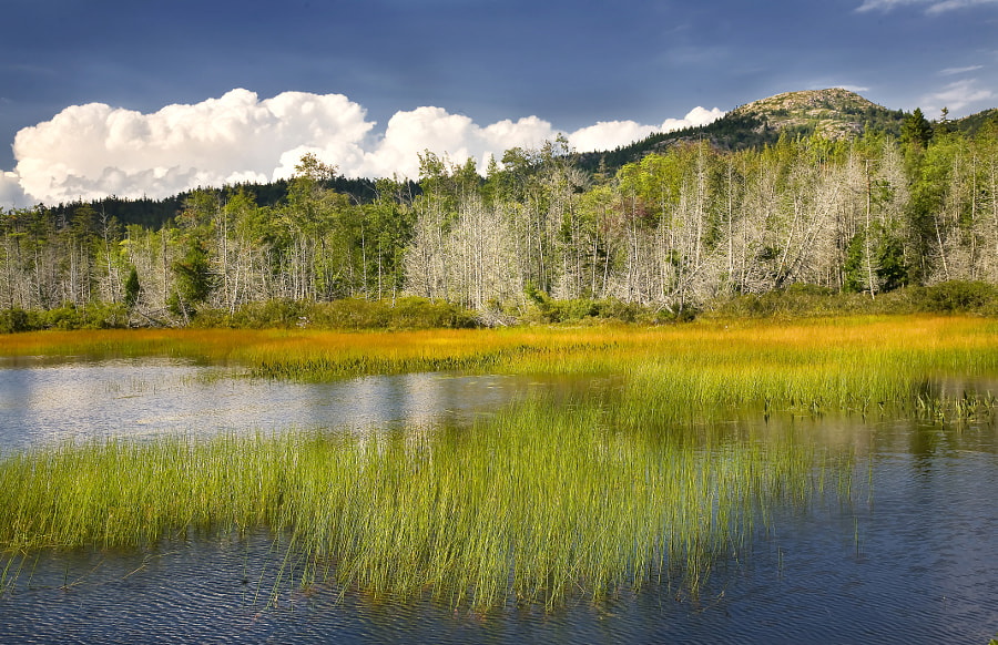 Bald mountain & Upper Hadlock Pond at Acadia National Park, Me. Acadia is one of the smallest but also one of the most visited national parks in America.