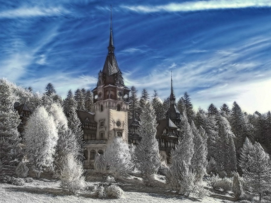 Photograph Pelesh Palace by Grzegorz Pstryk on 500px