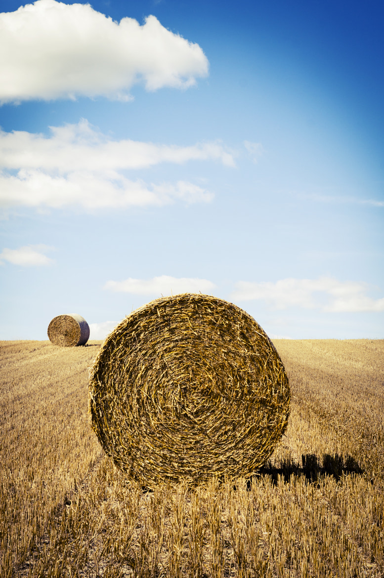 Photograph Hay by Andy Kirby on 500px