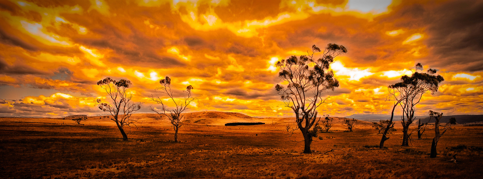 Photograph Fire in the sky by Richard Cowling on 500px
