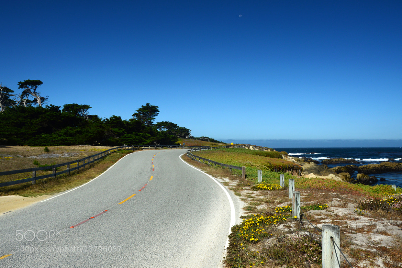 Photograph Little Road by Rodrigo Zan on 500px
