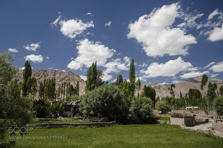 Photograph Ladakhi landscape by Olivier Heimana on 500px