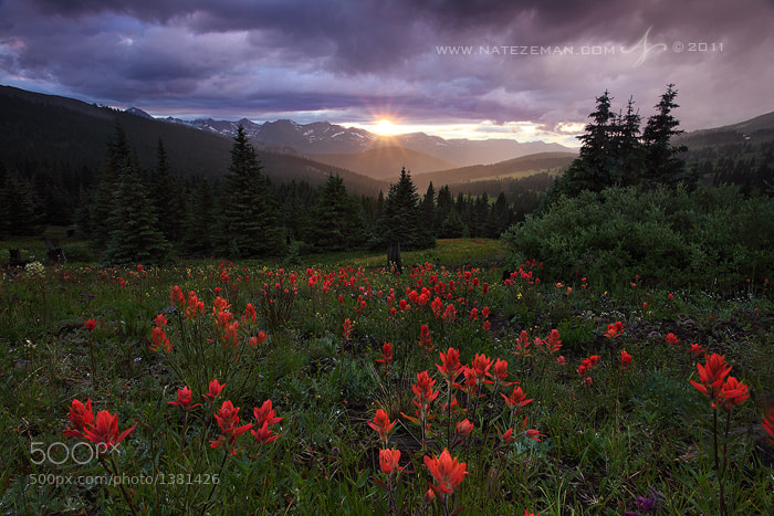 Photograph Paintbrush Pass by Nate Zeman | natezeman.com on 500px