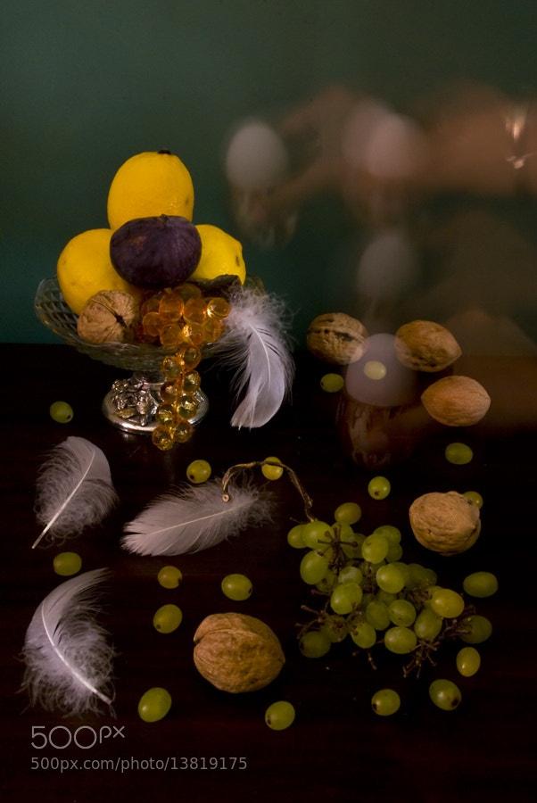 Photograph Hidden Eggs by Onur Güner Güray on 500px