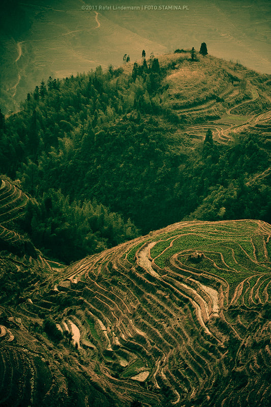 Photograph Longsheng terraces by Rafał Lindemann on 500px