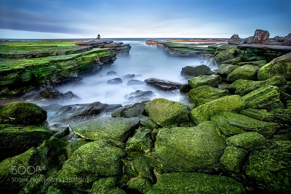 Photograph Turimetta by lim theam hoe on 500px