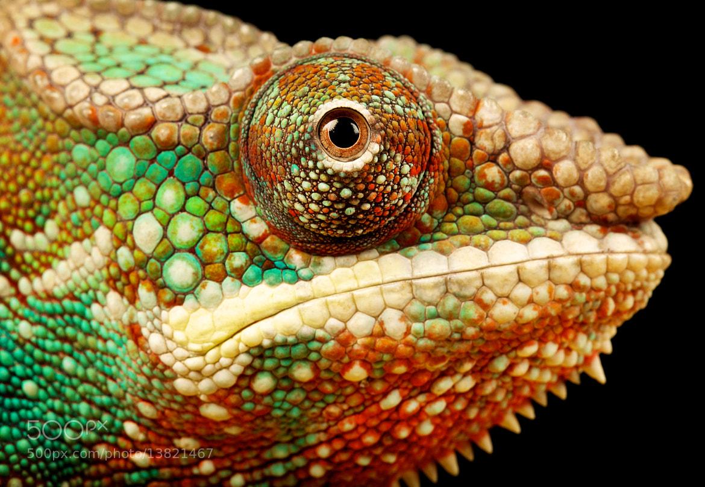 Photograph colour by Mark Bridger on 500px