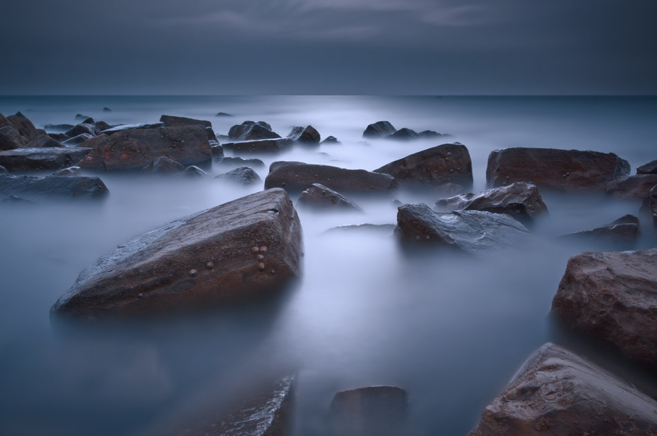 Photograph Silvery-blue by David Mar Quinto on 500px