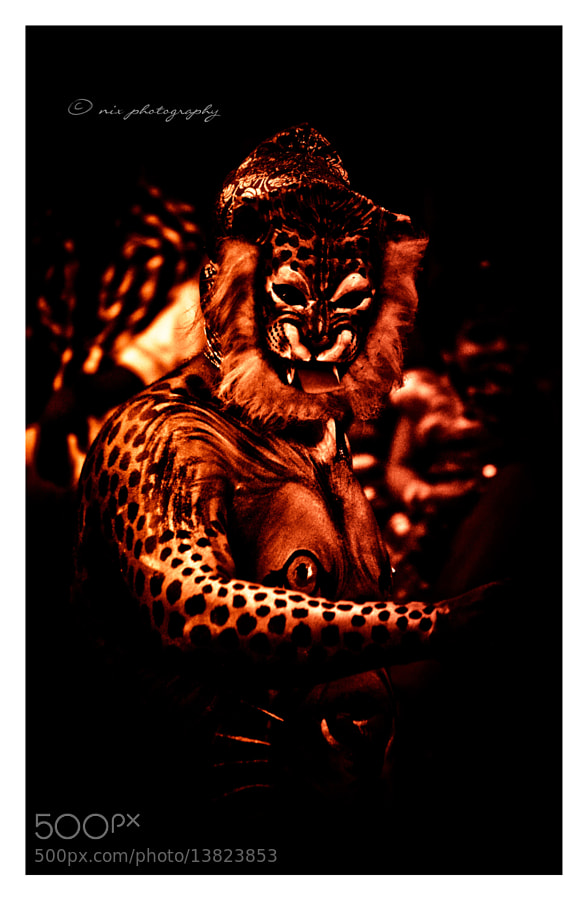 Photograph Puli Kali by Nithesh Kanth on 500px
