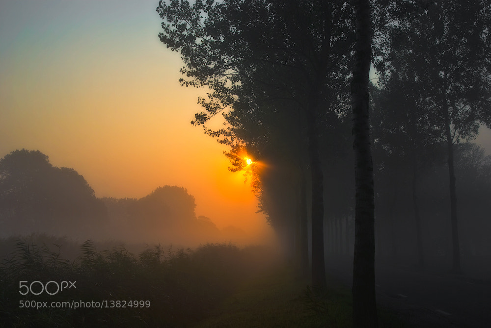 Photograph It was misty that morning by Allard Schager on 500px