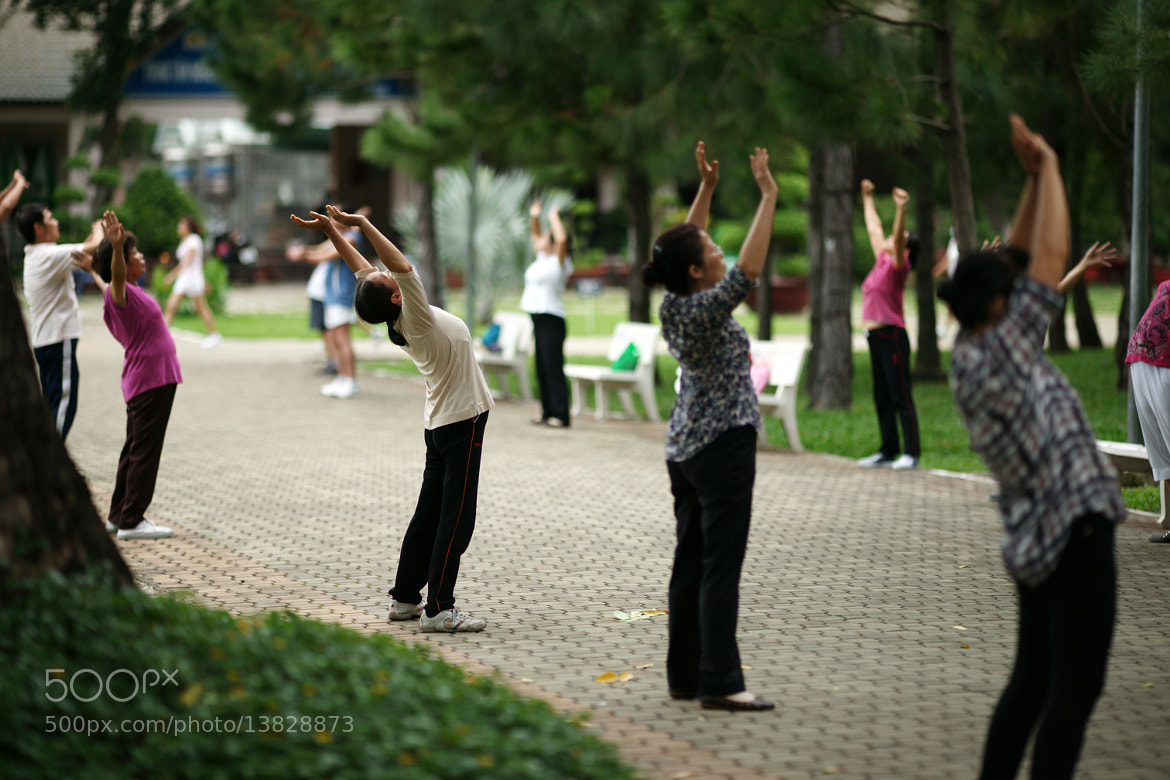 Photograph @In the park 2 by Diep Nguyen on 500px