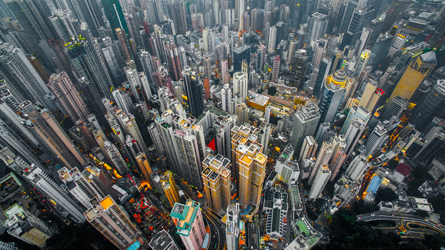 Urban Jungle by Andy Yeung on 500px.com