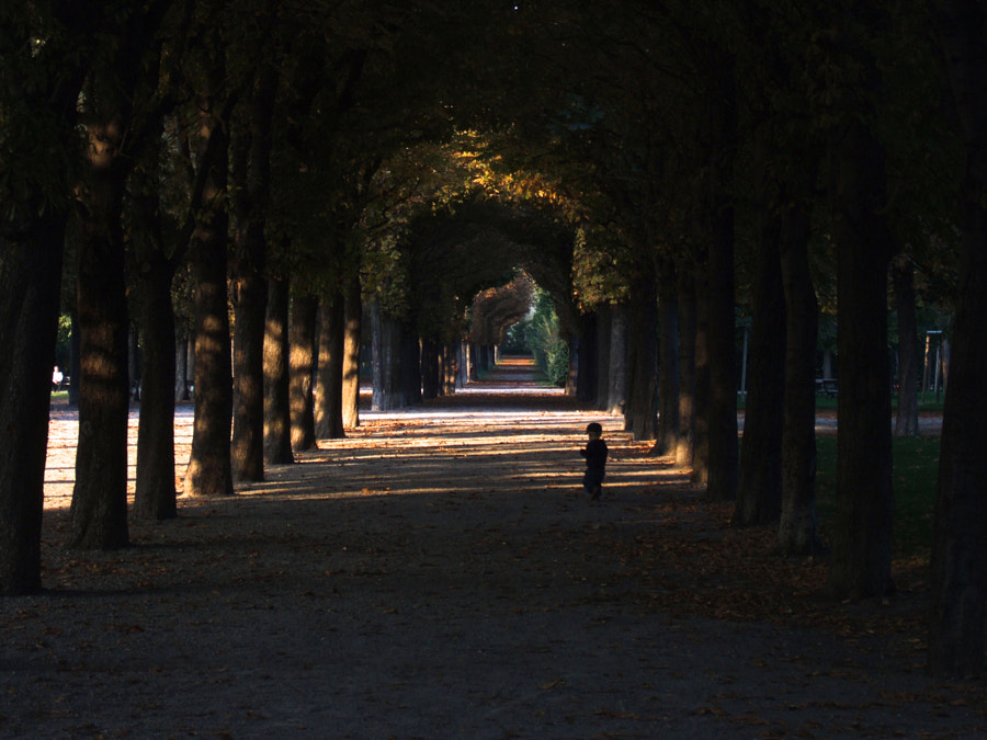 augarten by gabriel pall on 500px.com