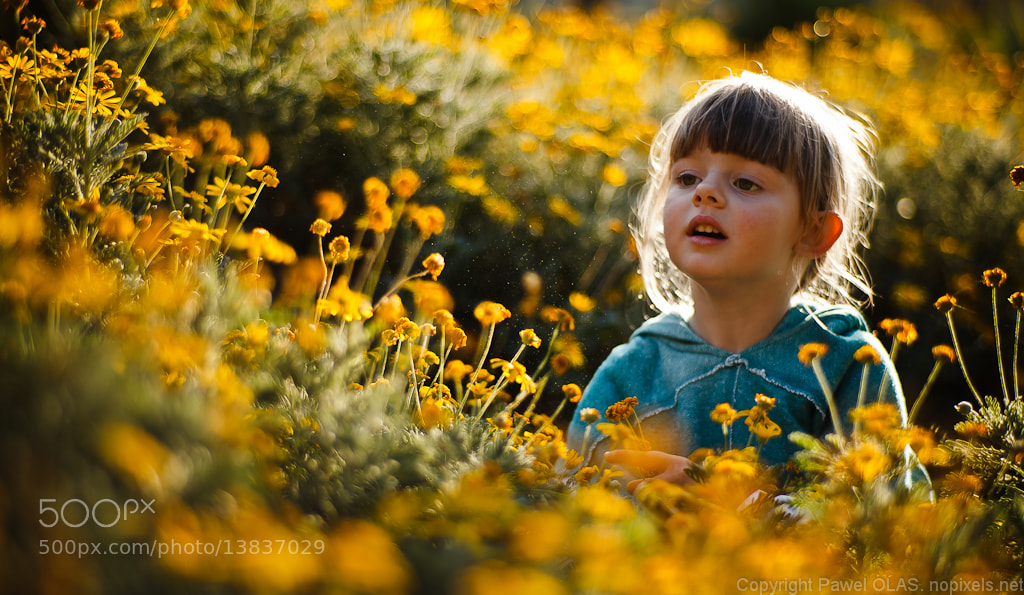 Photograph they cannot see me by Pawel Olas on 500px