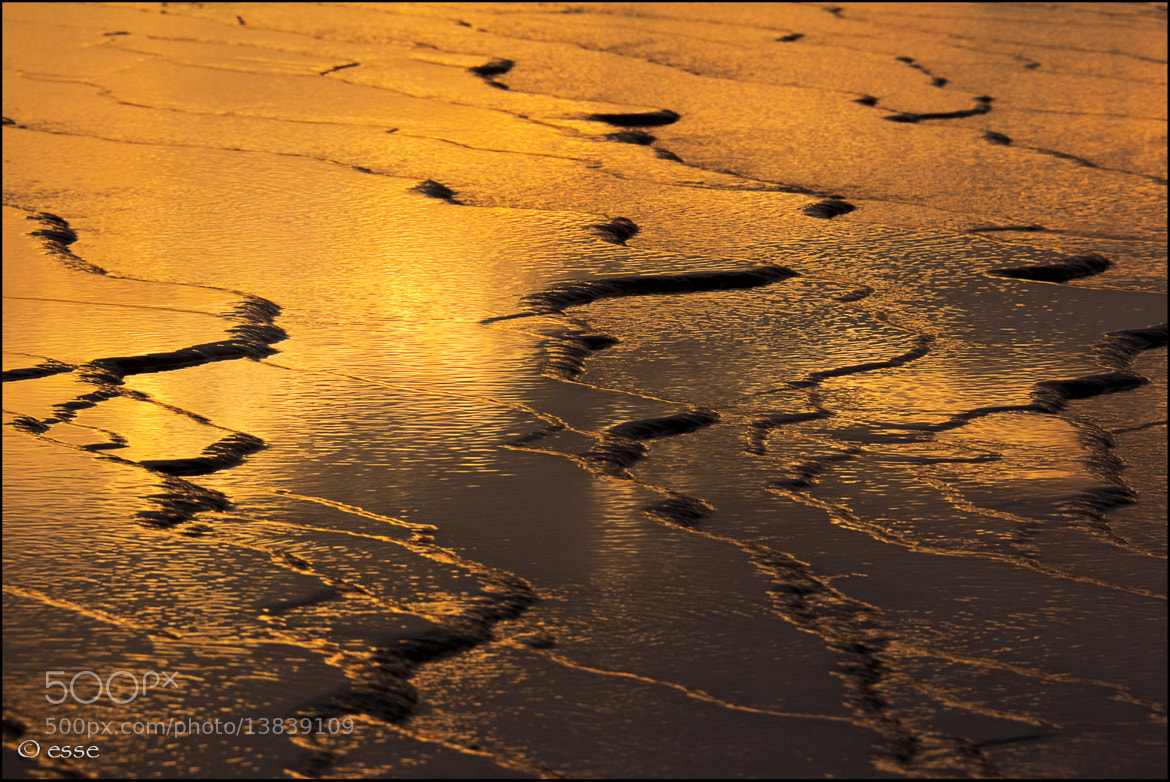 Photograph goldrush waves by _esse_ (simo) on 500px