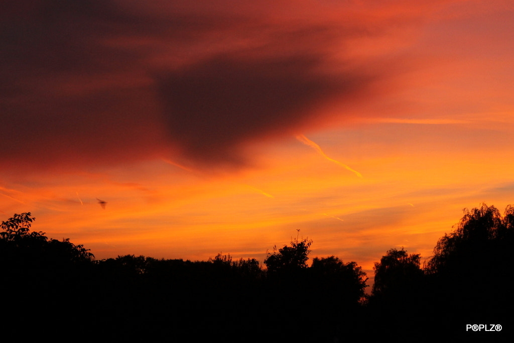 Photograph Sunset in Hageland by Carl Lapiere on 500px