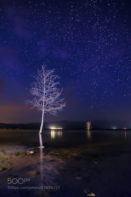 Photograph Magic night by Rilind H on 500px