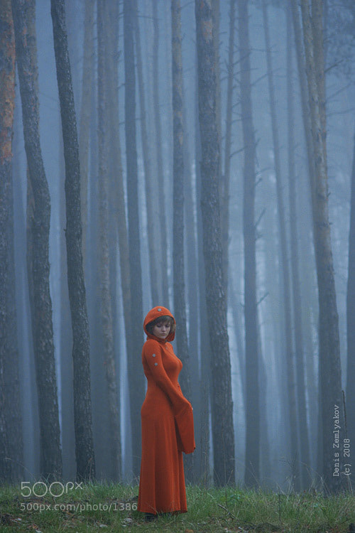 Photograph лесная (про красный) by Denis Zemlyakov on 500px