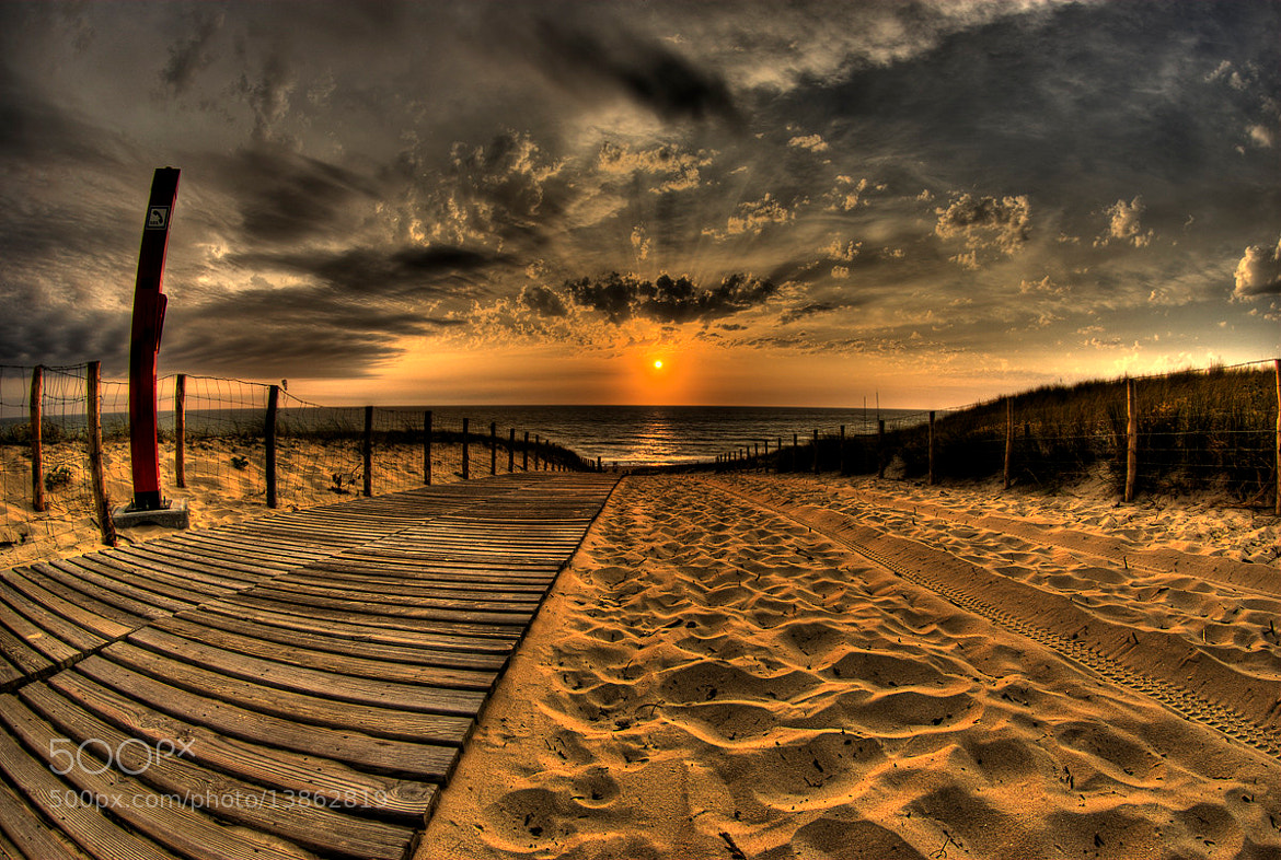 Photograph Sunset by Ahmed Diaa on 500px