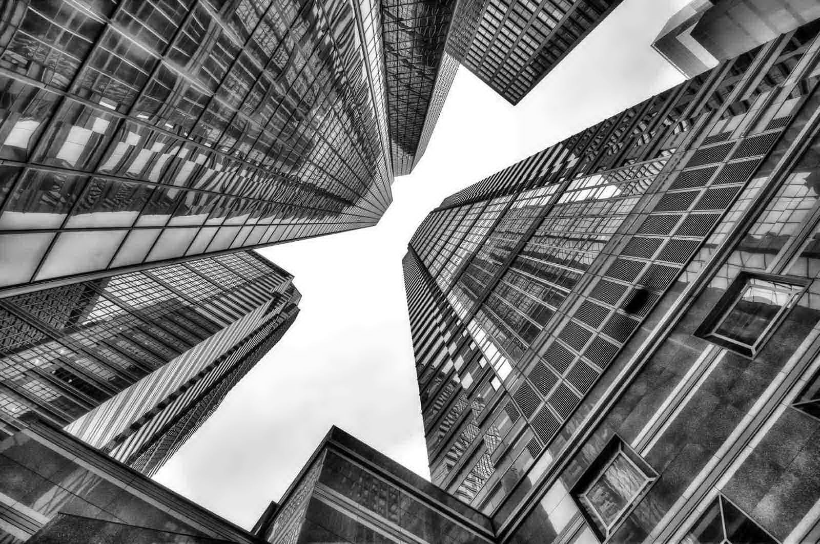 Photograph Reach For The Sky BW by Brian Collins on 500px