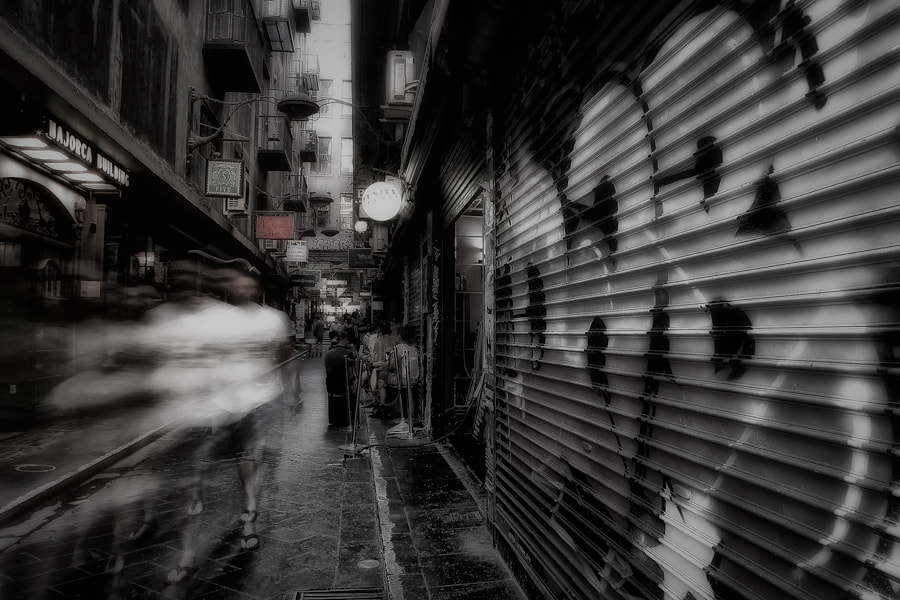 Photograph The Lane by Hany Kamel on 500px