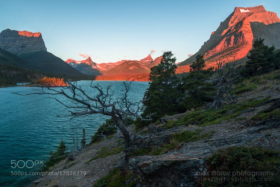 Photograph Rocky Mountain Glow by Alex Filatov | alexfilatovphoto.com on 500px