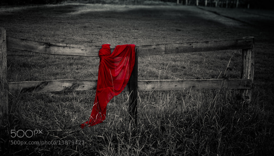 Photograph A little red  by Rucsandra Calin on 500px