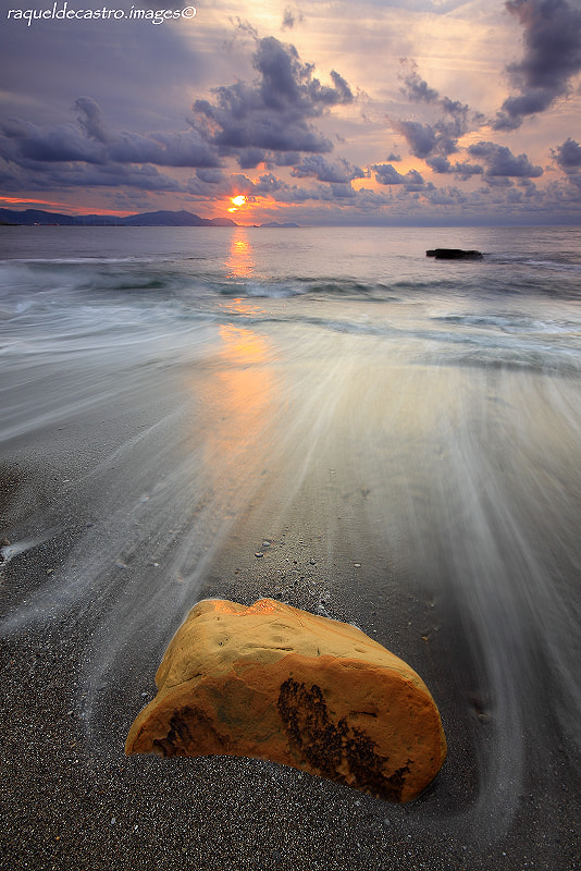 Photograph STRANDED SUN. by Raquel de Castro on 500px