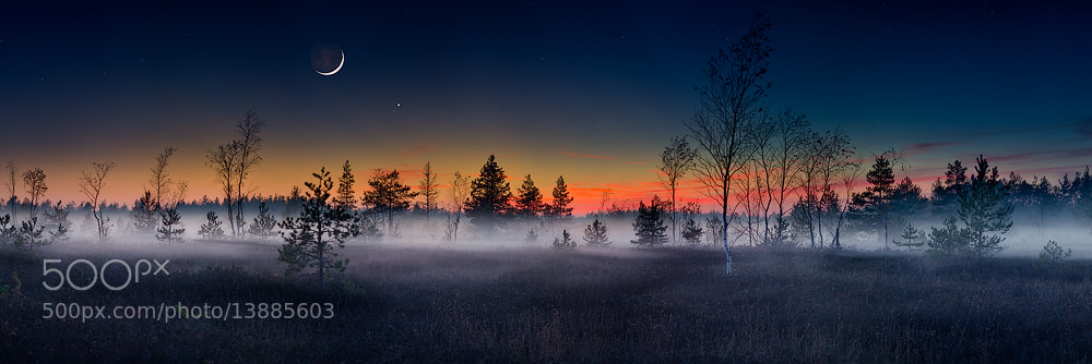 Photograph Fairy tail by Arturs Barzdis on 500px