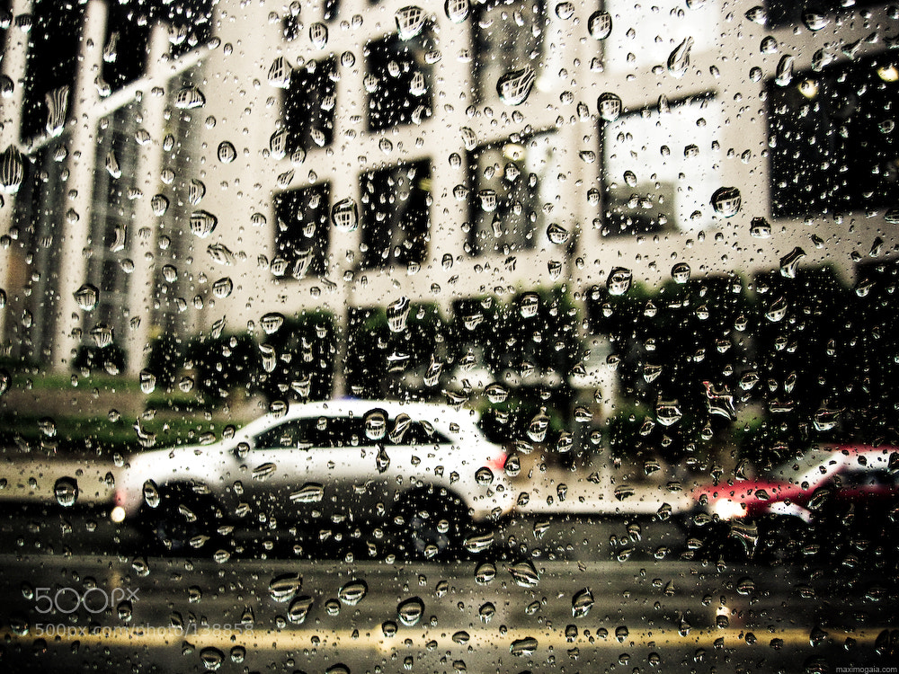 Photograph One rainy day in San-Francisco by Maximus Gaia on 500px