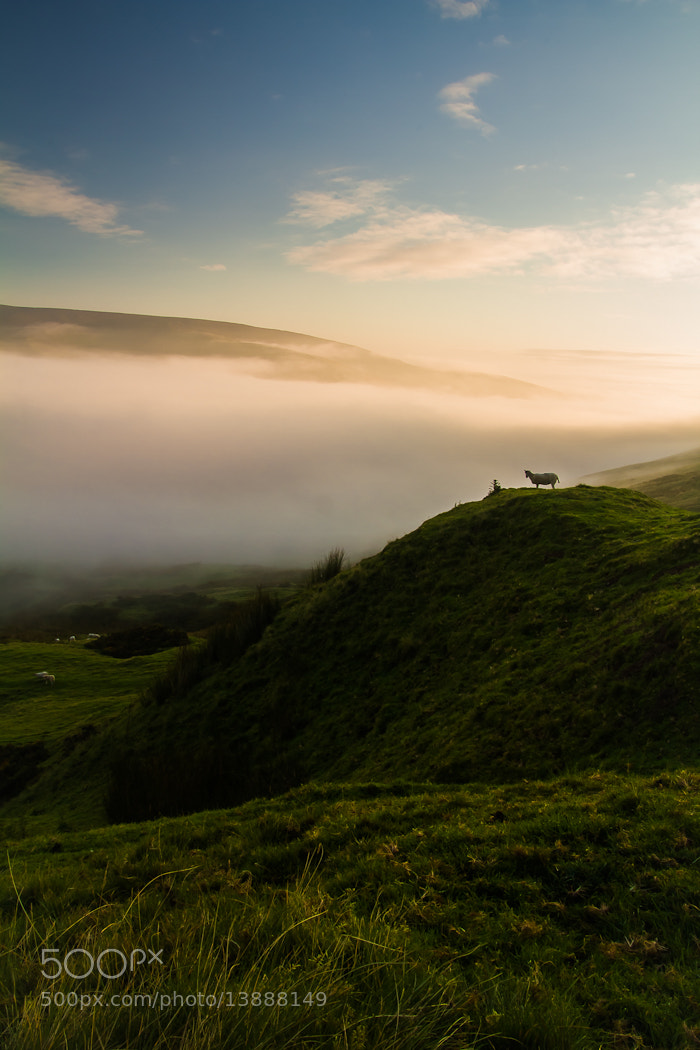 Photograph Dawnwatcher by Richard Wilson on 500px