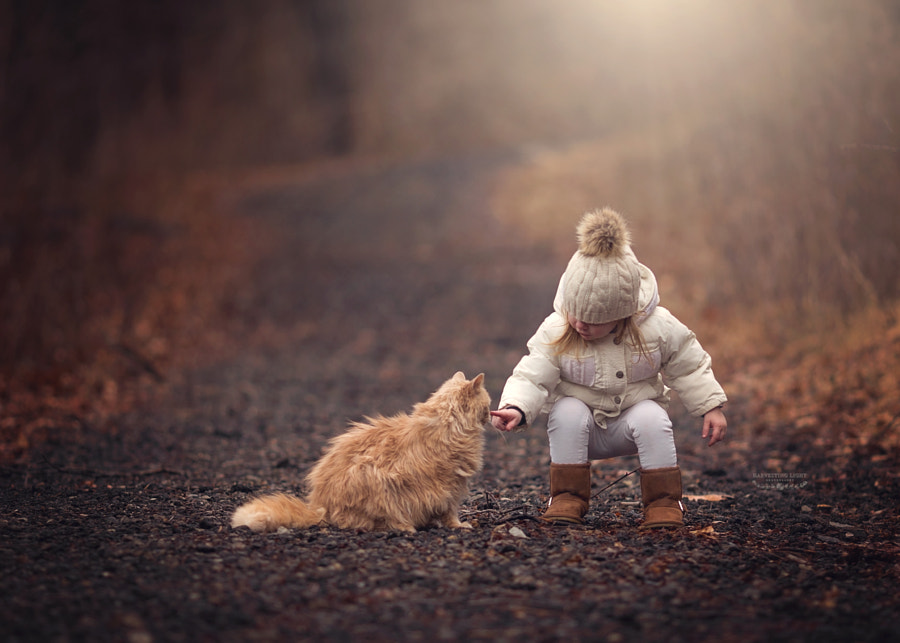 Forever Friends by Annie Whitehead on 500px.com