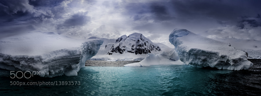 Photograph Antarctica Half Moon Island by Michael Leggero on 500px