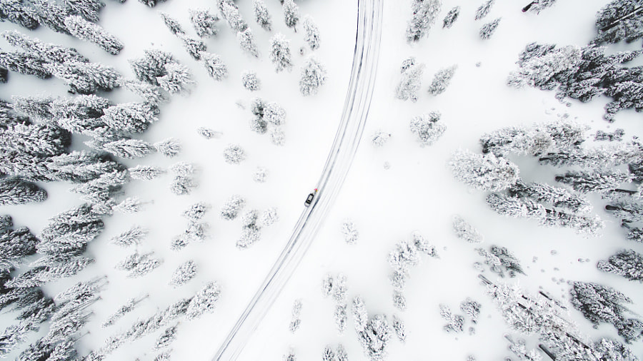 Whiteout by Ryan Millier on 500px.com