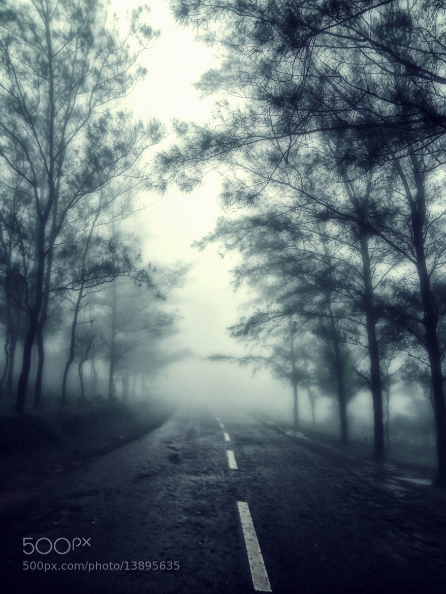 Photograph Sleepy hollow by ojeeez z on 500px