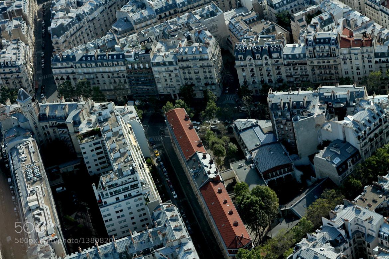 Photograph Paris by Arina A. on 500px