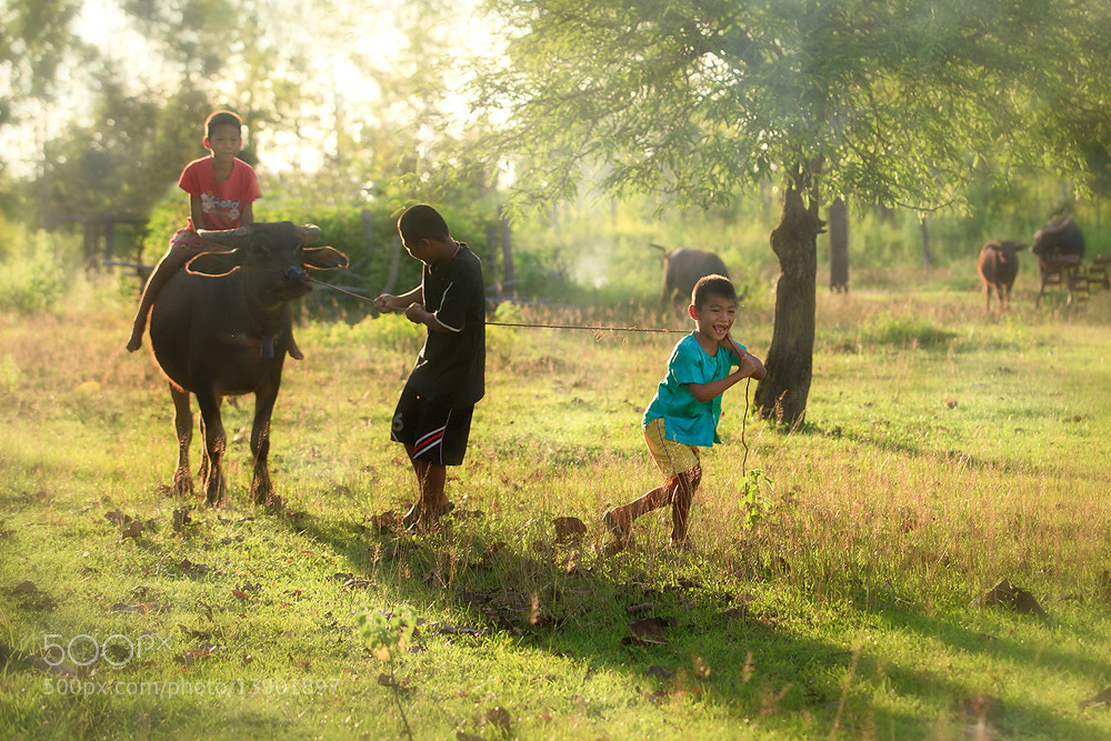 Photograph Play by Saravut Whanset on 500px