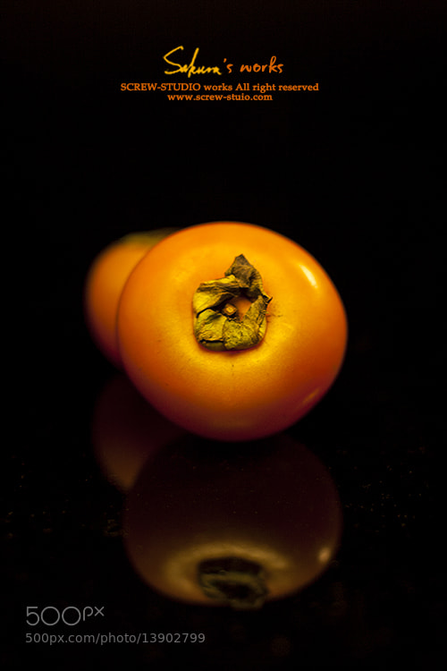 Photograph Persimmon by Miss Sakura on 500px