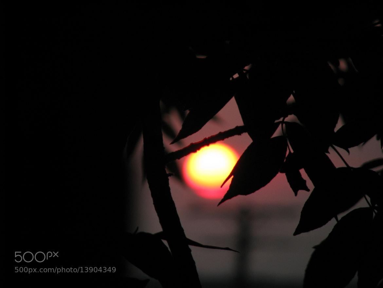 Photograph Sun goes down by Louis-Félix Taschereau on 500px