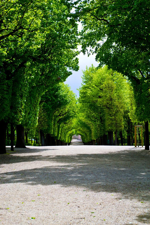 Photograph Schloß Schönbrunn by Jacq Isabella on 500px