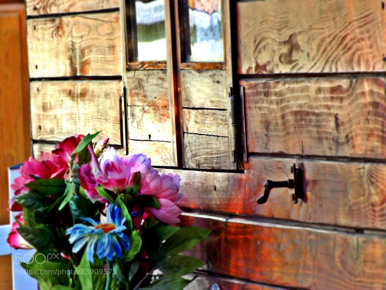 Photograph Haus by Alberto Maieli on 500px