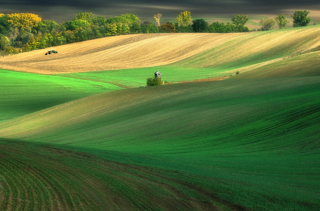 Photograph Fields... by Krzysztof Browko on 500px