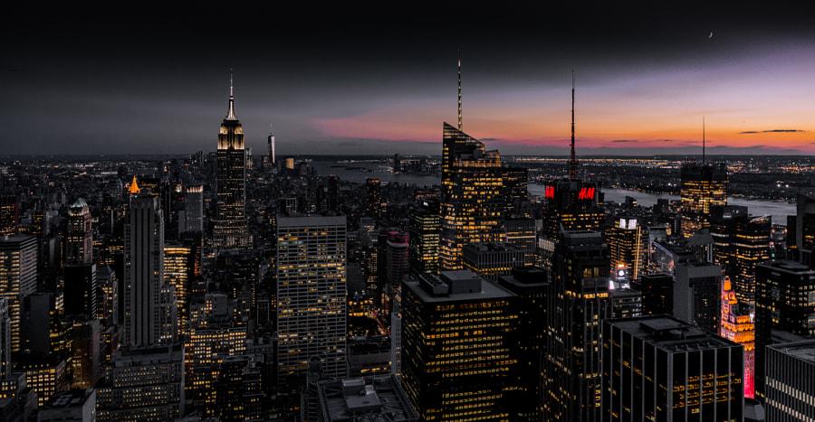 NY#31