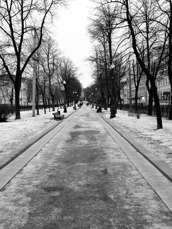 Morning walk. Moscow.