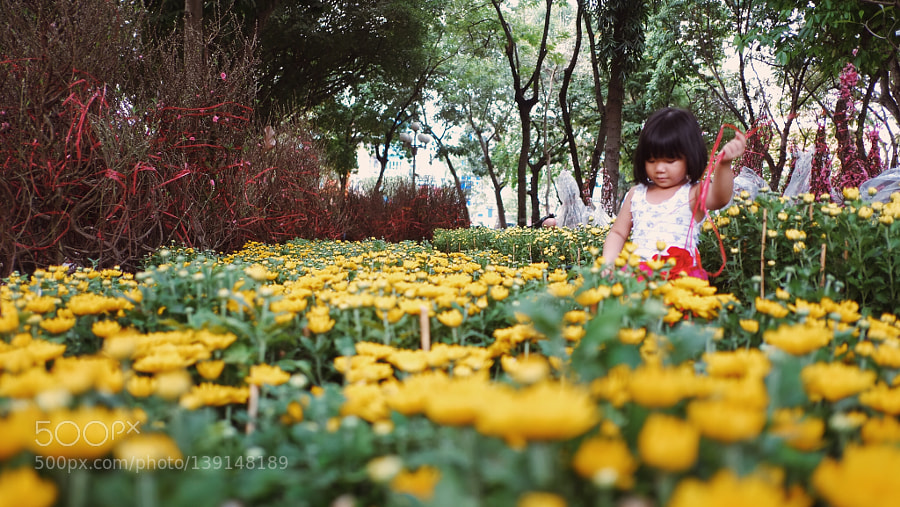 Little Girl's helping her mom lookIng after their flowers during Vietnam traditional Tet season