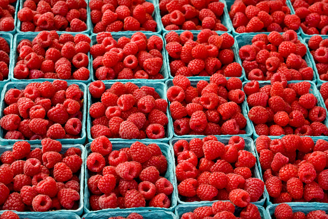 raspberries by Heather Balmain on 500px